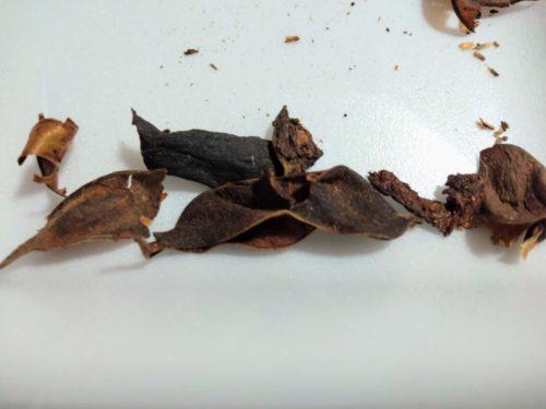 処理後の枝豆の皮